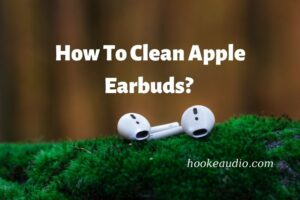 How To Clean Apple Earbuds Top Full Guide 2021