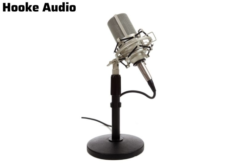 The price range for ribbon microphones