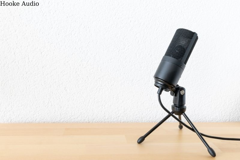 Typical microphone applications