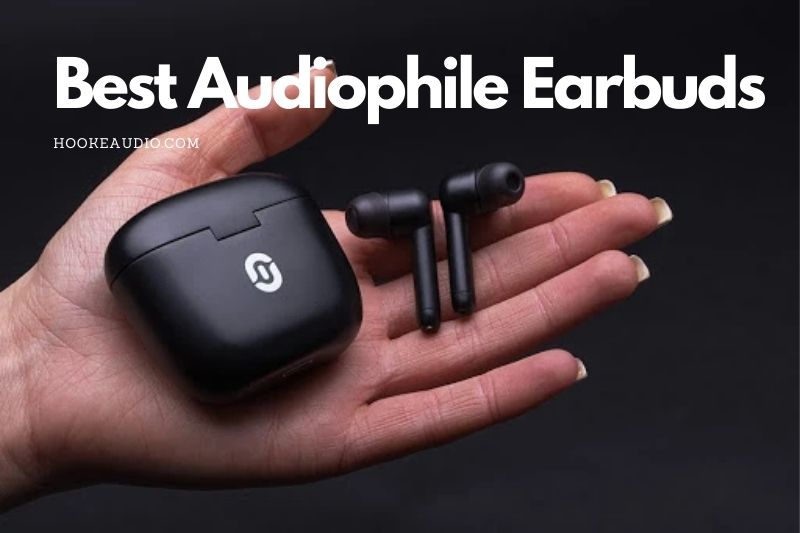 Best Audiophile Earbuds in 2021 Top Brands Review