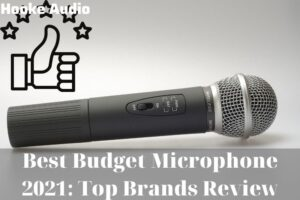 Best Budget Microphone 2021 Top Brands Review
