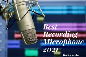 Best Recording Microphone 2021 Top Brands Review