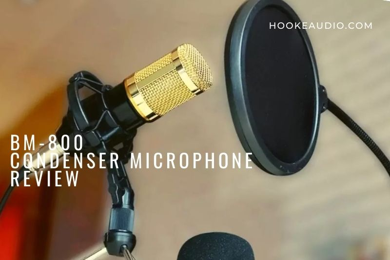What is the BM-800 Microphone?