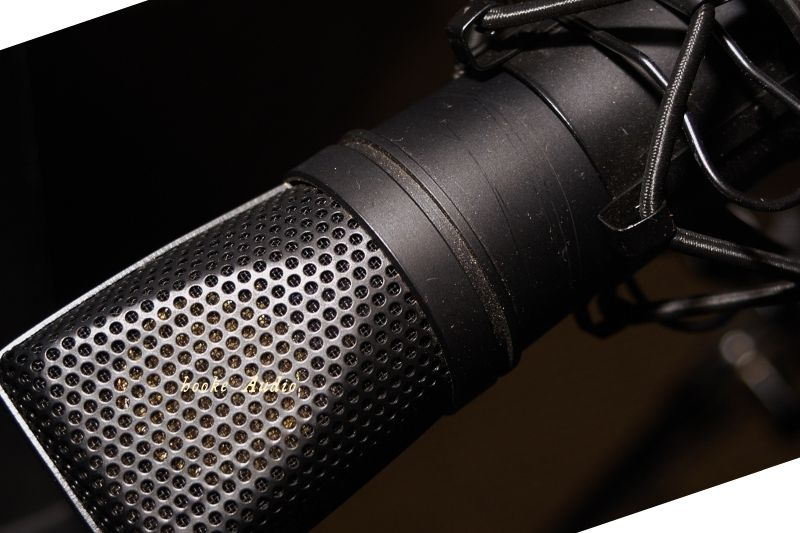 it worth buying a ribbon microphone